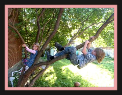 We let the kids climb trees