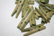 Window Shopping Wednesday - Keeley Behling Studios -Mini Green Clothespins Set of 12